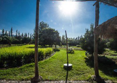 new-jardin-01
